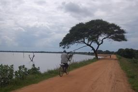 Ontime at Mahavilachchiya